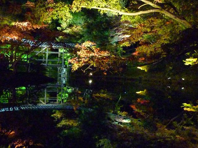 高台寺の紅葉ライトアップを見てきました